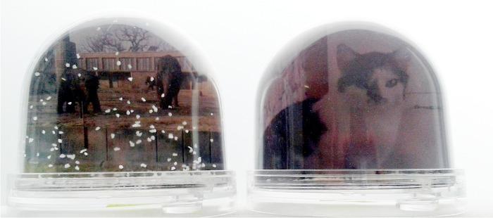 schneekugel mit 2 fotos print copy scheffler. Black Bedroom Furniture Sets. Home Design Ideas